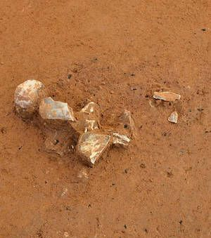 en Saxe-Anhalt ,un atelier d'ivoire datant de quelque 35.000 ans a été découvert.Autrement dit, à cette époque, des Homo sapiens ont fabriqué des perles et des objets d'art en ivoire de mammouths.
