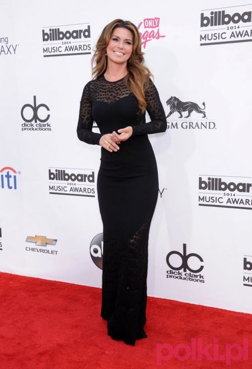 Billboard Music Awards 2014: Shania Twain