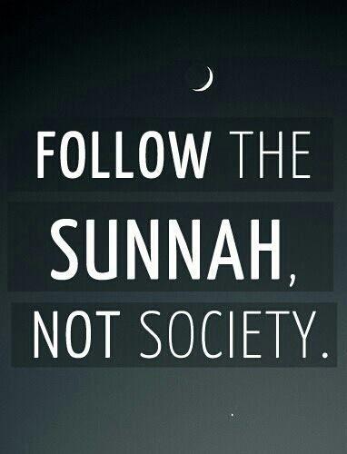 sunnah of prophet muhammad pdf