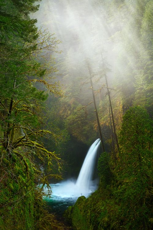 Waterfall by Miles Morgan