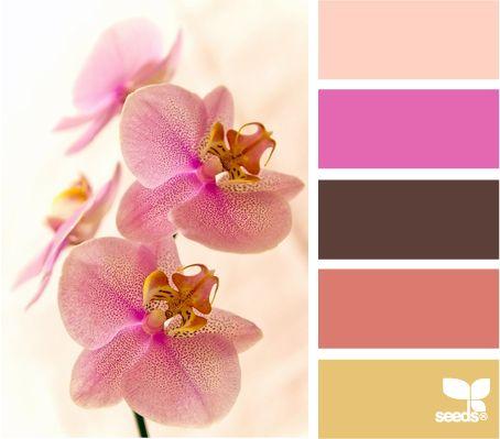 flora hues: Nursery Colors, Design Seeds, Hues Design, Bedroom Colors, Color Palette, Colour Palette, Floral Hues, Color Combination