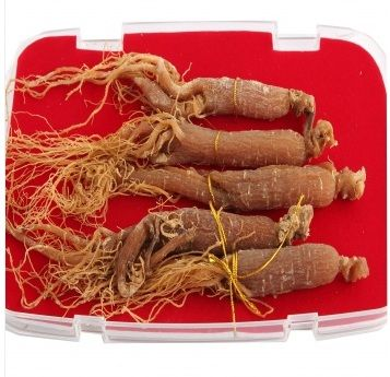 JuYuan Changbai Mountain Red Ginseng 6 Years Grown 5 Branches