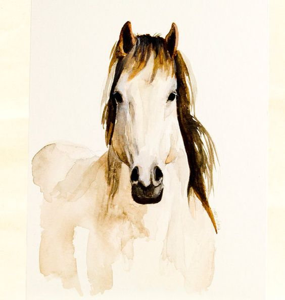 Watercolors, White horses and Originals on Pinterest
