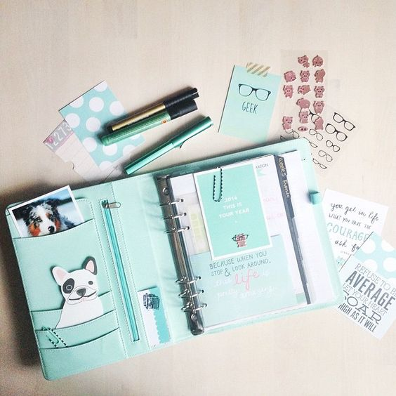 pastel_paperplane's photo on Instagram // Kikki-K Planner large (mint + gold dots)