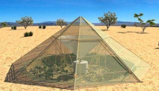 Invernadero que funciona en clima desértico