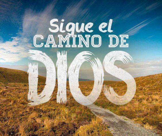Sigue el camino de Dios.