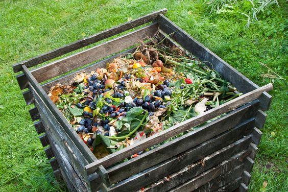 ¿Cómo hacer compost casero? | Ingredientes que Suman