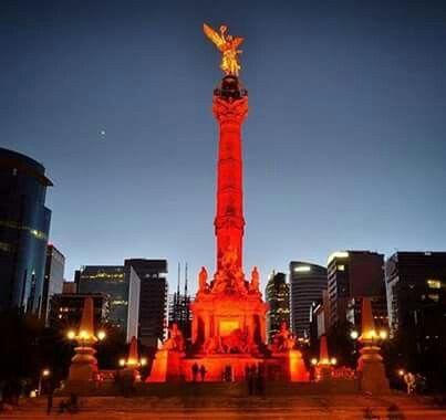 Cd. México