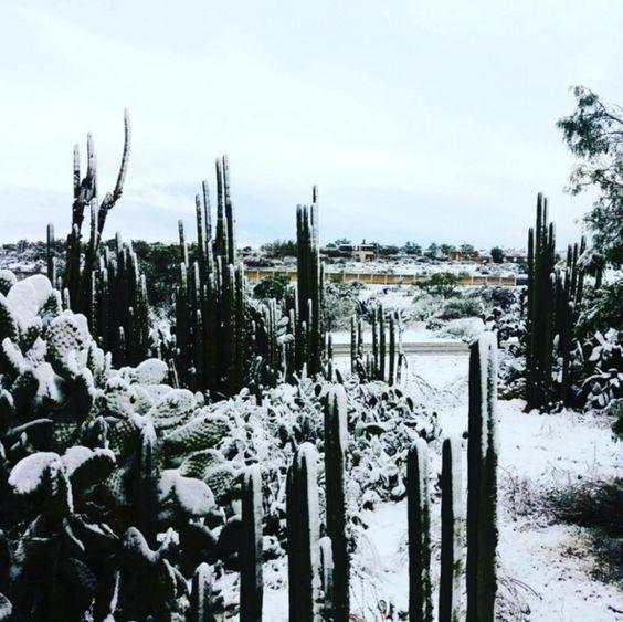 Repentinamente, los pueblos mágicos se volvieron más mágicos. | 17 Hermosas imágenes de las nevadas en México que te dejarán frío
