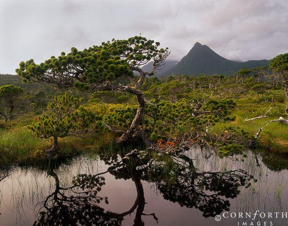 Yakobi Wilderness, Alaska