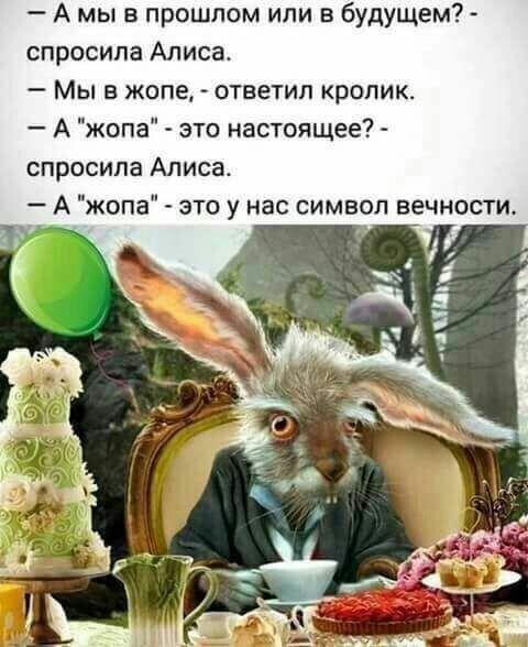 https://i.pinimg.com/564x/bf/47/c9/bf47c9e02c76385d7be5229dc884030f.jpg