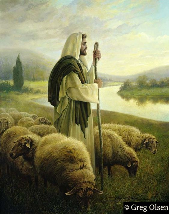 "Greg Olsen — ""The strong and watchful keeper of the flock, who knows His sheep and is known by them, guides the sheep to green pastures and to still waters where they can graze and safely drink. He gathers them before the approaching storm and searches for those that may be lost. He places Himself between danger and the flock he tends. His sheep recognize His voice, and His call is a call to peace, safety, and contentment."""