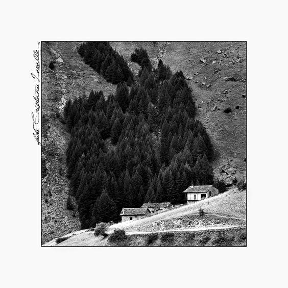 https://flic.kr/p/duBTu5 | Vallone della Traversiera - Valle Maira |  Sali di Argento - Hasselblad 500CM - Efke 25
