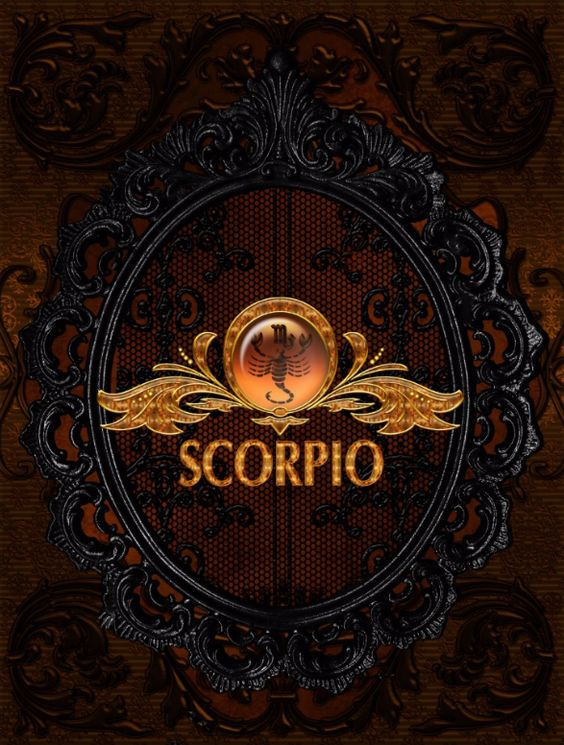 Amazon com  The House of the Scorpion                  Nancy     Indian Autos Blog