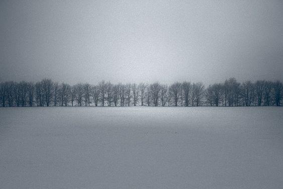 Winter gray on gray.