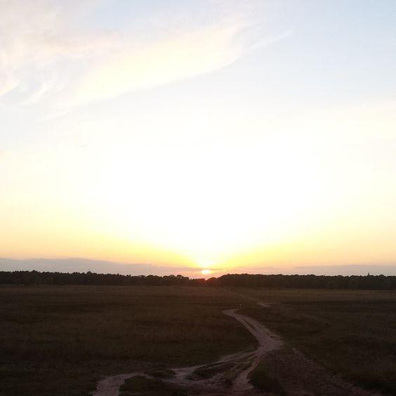 Route du soleil op de #bussumerhei  #zon #avond #lucht #sunset #Bussum #bussumerheide #wandelen #walking #wandelfilosoof