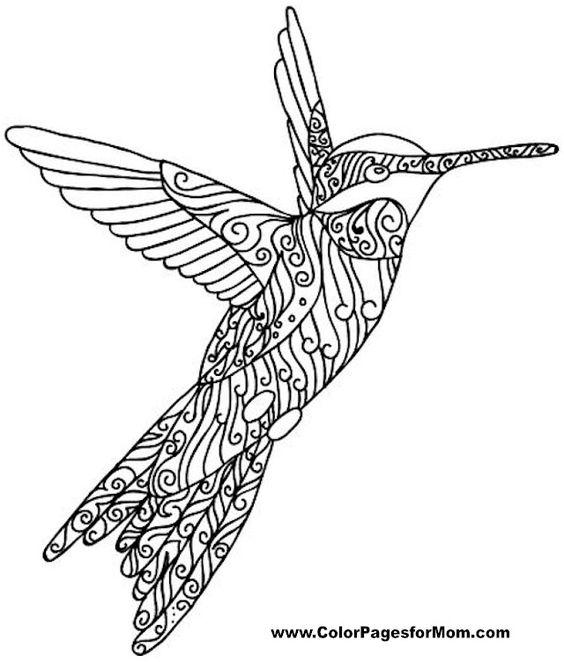 aves para colorear pdf
