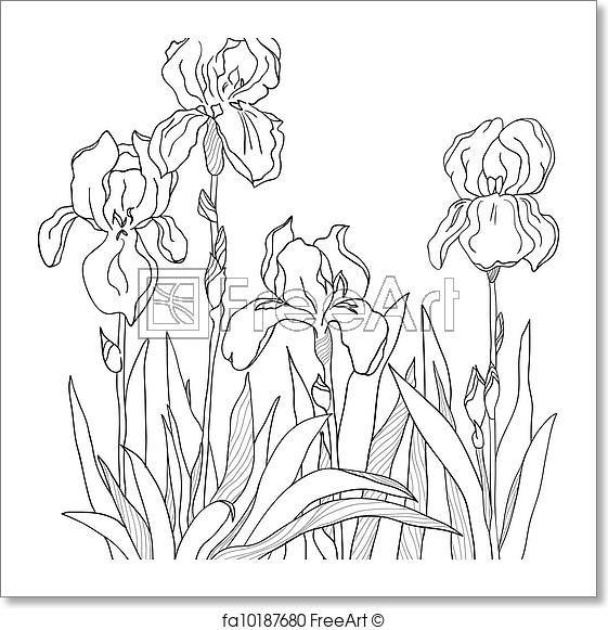 Freeart Fa10187680 Free Art Prints Art Prints Coloring Book Art