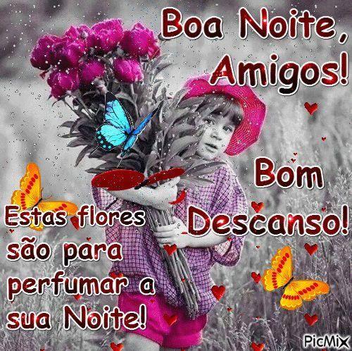 Boa Noite amigos flores para você