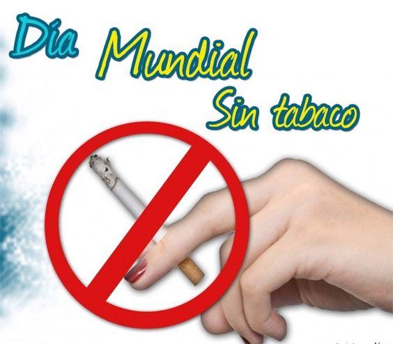dia mundial sin tabaco 2013 | ... reivindica el papel de la acupuntura en el Día Mundial Sin Tabaco