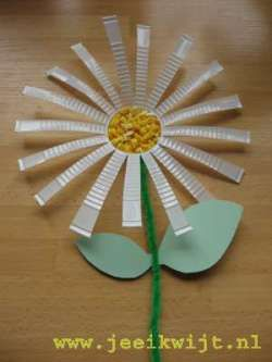 Spring craft daisies