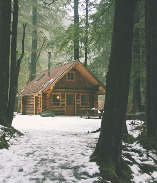 6 of these small cabins around the main house, to start a homesteading community.