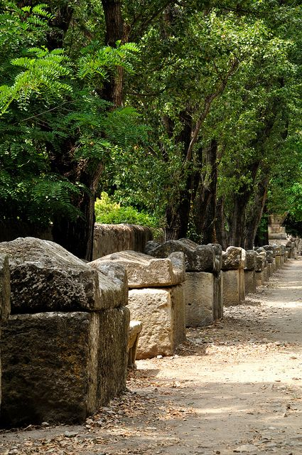 Roman ruins in France~ Les Alyscamps - Arles, France