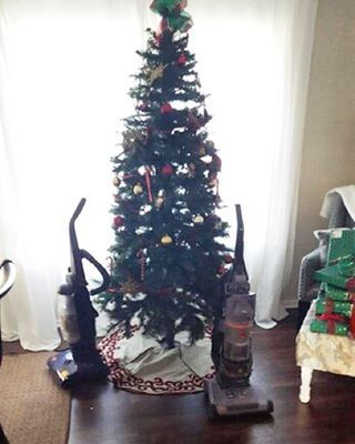 How to protect a Christmas Tree from your cat: