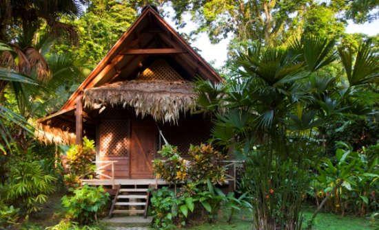 Caribbean Coast Exposed Costa Rica Experts Costa Rica Travel Guide Southern Caribbean Costa Rica Vacation