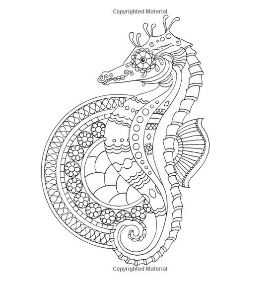 Advanced Ocean Coloring Pages : Seahorse ocean underwater sea coloring pages colouring