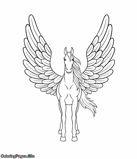 Beautiful Pegasus With Wings Coloring Page Unicorn Coloring Pages Unicorn Wings Bear Coloring Pages