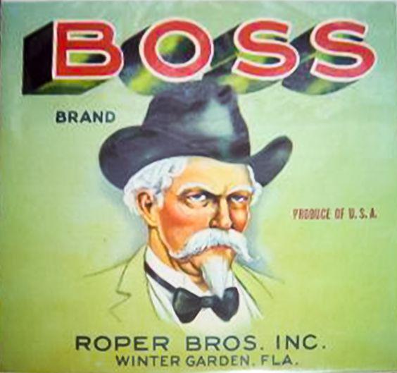 Boss Brand, Winter Garden, Florida