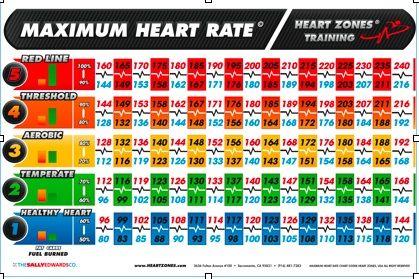 Heart Rate Training Zones | Workout Motivation | Pinterest ...