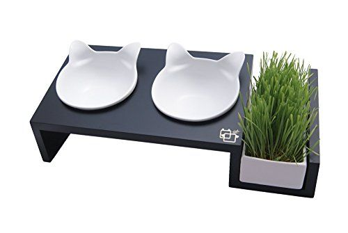 ViviPet Cat Dining Table _15° Tilted Platform Elevated Pet Feeder_ for Cat and Dog under 20 pounds Solid Pine Stand with Ceramic Bowl ViviPet http://www.amazon.com/dp/B01225SSSQ/ref=cm_sw_r_pi_dp_HXkswb0VTR2KQ