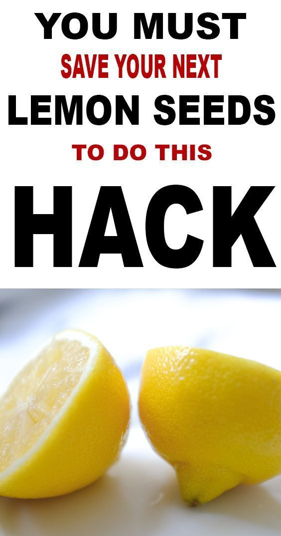 Save Your Lemon Seeds For This Fun Lemon Tree Hack Lemon