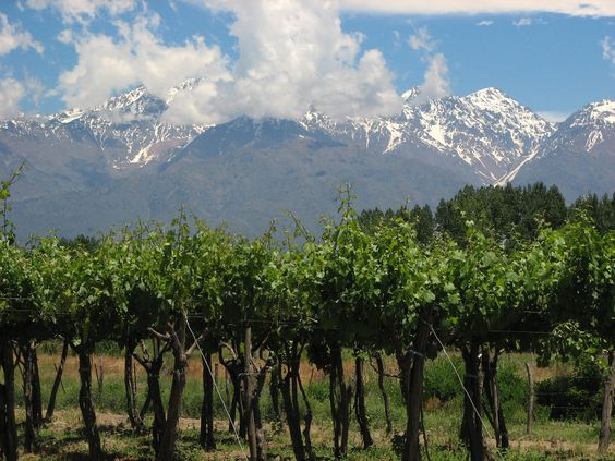 Mendoza is located at the feet of the Andes mountain range.