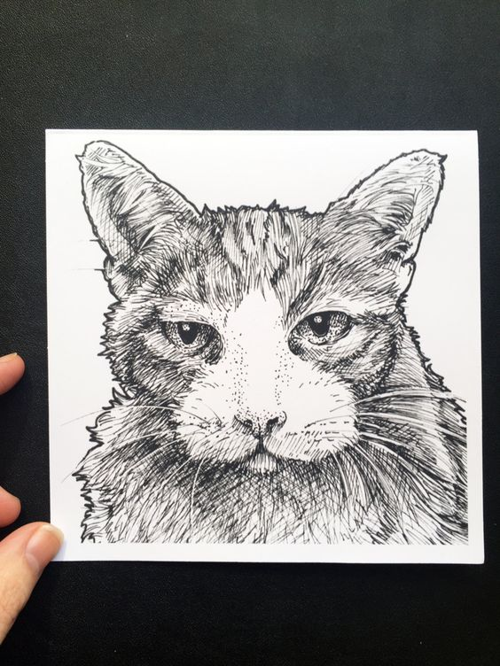 New to Atramentaria on Etsy: One (1) Original Tabby Cat Face Greeting Card - Detailed Cat Illustration Blank Greeting Card - Black and White Ink Drawing (2.75 USD)