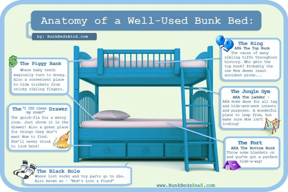 """Anatomy of a Bunk Bed. Cute """"special uses"""" for kids bunk beds. For more info check out http://www.bunkbedsatoz.com/anatomy-of-a-bunk-bed ."""