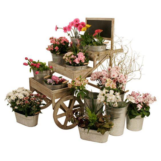 Sally Garden Cart