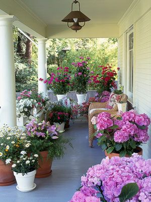a porch full of containers