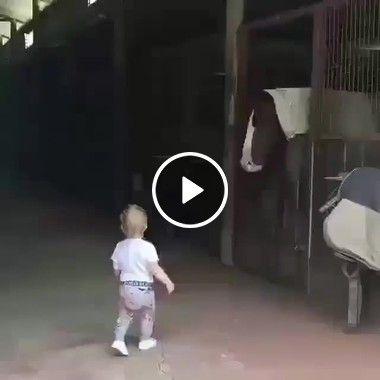 Criança cuidando dos animais
