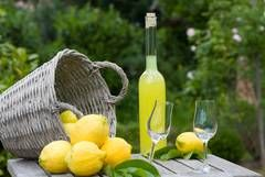 So lecker: Zitronenlikör von Zitronen direkt vom Baum, einfach nur pur oder im Sommer auf Eis.