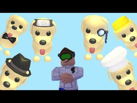 4 New Accessories For Pets In Adopt Me On Roblox In 2020
