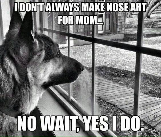 Love my puppy nose art <3