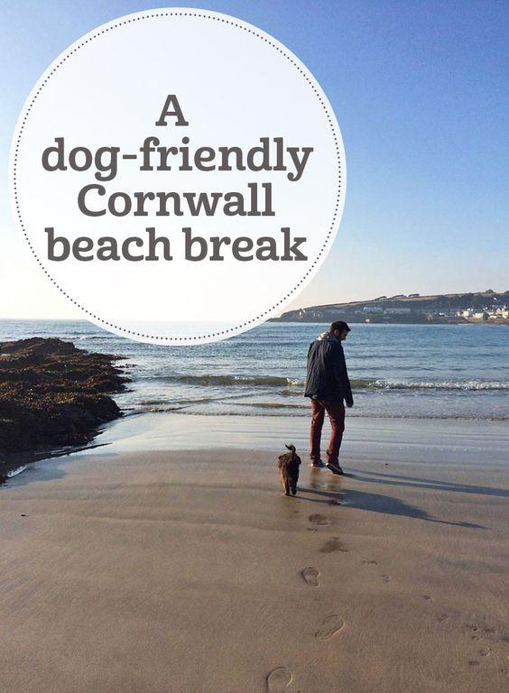 A Dog Friendly Cornwall Beach Break Hotels And