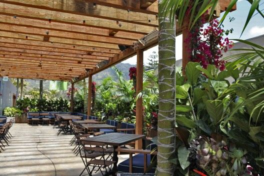 And the pretty outdoor deck doesn't hurt one bit @cafehabana