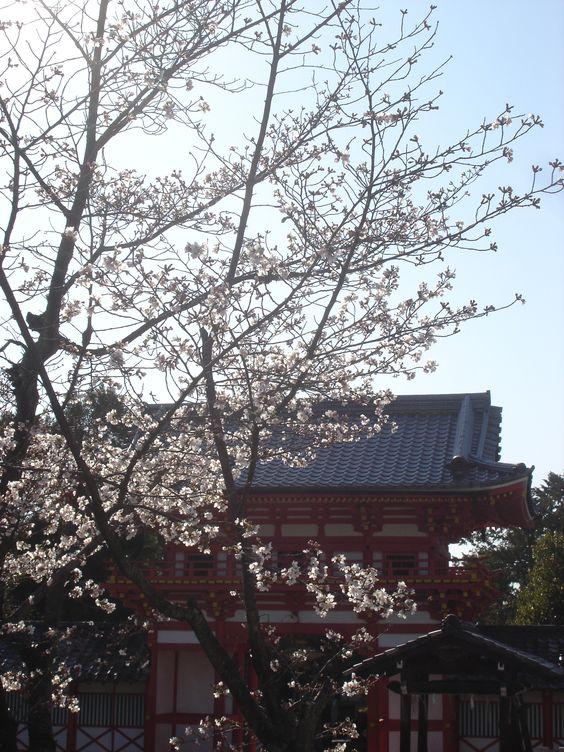 新日吉神宮 / Imahie-jingu Shrine / Sanctuaire Imahie-jingu