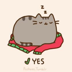 Pusheen The Cat: Things Your Cat Wants For Christmas