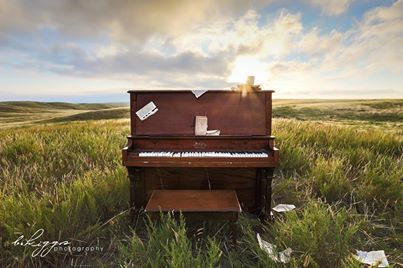 Taken by talented Britney Higgs Photography on the farm in Montana.  LOVE THIS! www.facebook.com/britneyhiggsphotography