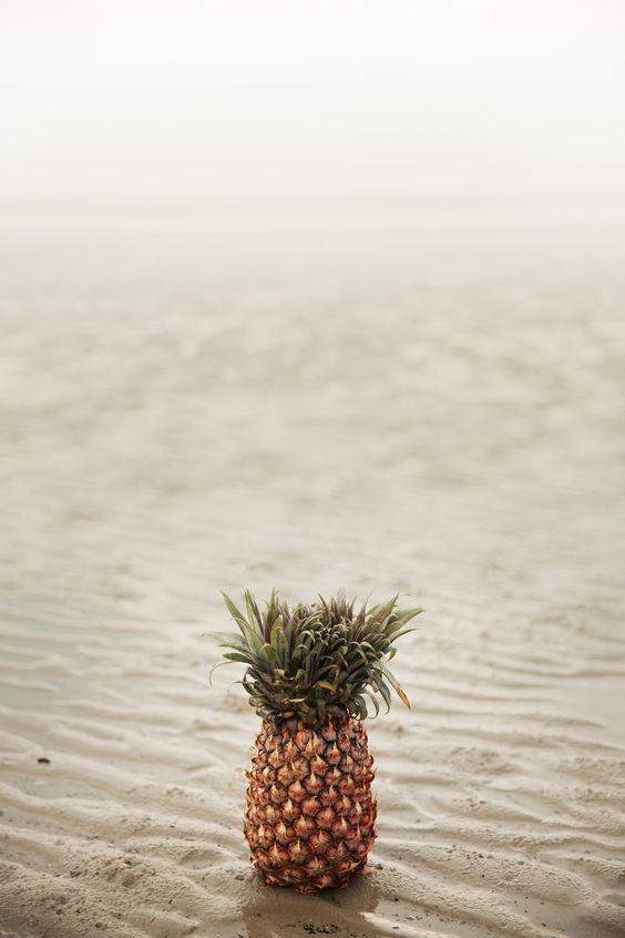 meet petey the pineapple //